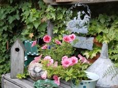 littlehouses garden